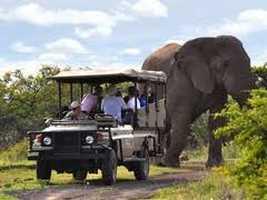 Nambiti Private Game Reserve Lodges